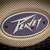 Peavey Classic 30 - Detalle Logo